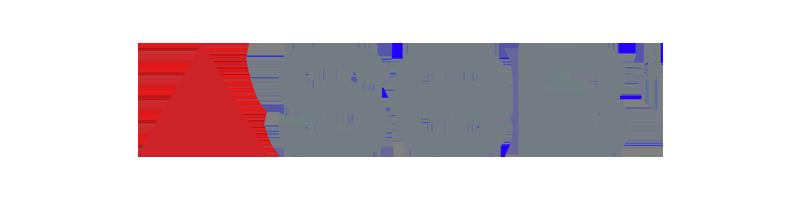 Le groupe Seb est une société française numéro un mondial dans le domaine du petit équipement domestique. Aujourd'hui avec sa trentaine de filiales (Moulinex, Calor, Tefal, Krups, Rowenta, WMF, Lagostina, Emsa....), le groupe Seb est présent dans toutes les catégories de produits ménagers et petit électroménager : robot, cafetière, articles de cuisson, de beauté, de soin du linge, nettoyage des sols etc.)